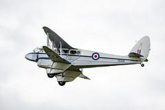 Daks-Over-Duxford-1-16 (Dreaming of Steam) Tags: 2019 75th airshow aircraft airplane dday daksoverduxford dehavilland dragonrapide duxford duxfordairmuseum vintage worldwar2 worldwartwo aviation plane