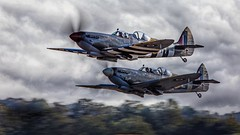 Twin twins. (waynedavey67) Tags: canin canon 5ds canoneos5ds 600mmlf414 spitfire twunseaterspitfire raf airdisplay air aircraft airoplane fighterplane fighters duxford2019 duxford