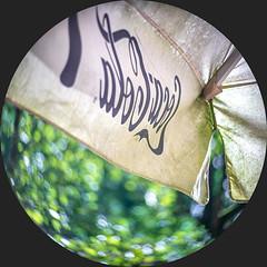 Summer days (leo.roos) Tags: bokeh reclame russ lenz nex6 parasol cocacola swirly meteor51191769 meteor51176919 movielens darosa 16mmmoviecamera russianlenses krasnogorsk3 cinelens красногорск sovietglass leoroos метеор51191769 krasnogorsk2