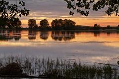 Reflejos dorados (pascual 53) Tags: ablitas navarra largaexpo amanecer reflejos canon laguna 50mm calma colores pelusas