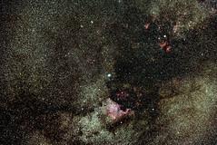 Cygnus Deneb + North America Nebula (Vladimir Machek) Tags: deepsky stars astrophotography ngc7000 nebula deneb cygnus astronomy universe nikonz new outside sky nature night light astrometrydotnet:id=nova3627923 astrometrydotnet:status=solved
