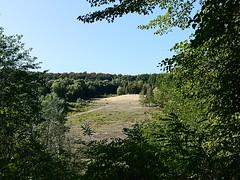 Grunewald_e-m10_1019229215 (Torben*) Tags: rawtherapee olympusomdem10 olympusm17mmf18 berlin grunewald sandgrube sandpit sandgrubeimjagen86desgrunewaldes