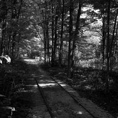 End of Line (Alex Luyckx) Tags: milton ontario canada haltoncountyradialrailway haltoncountyradialrailwaymuseum railway railroad radialrailroad infrastructure history livinghistory museum transit ttc lightrail streetcar tram torontotransitcommission londonportstanleyrailway frankeheidecke rolleiflex rolleiflex28f tlr 120 6x6 mediumformat square carlzeiss carlzeissplanar80mm128 filmotech orwo orwoun54 un54 lomography lomographypotsdam100 potsdam100 asa100 blazinal rodinal 150 epsonv700 adobephotoshopcc blackwhite bw filmphotography film believeinfilm filmisalive filmisnotdead