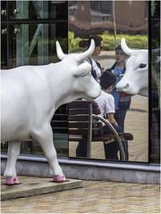 Cow Sculpture (Luc V. de Zeeuw) Tags: children cow sculpture woman ventspils latvia