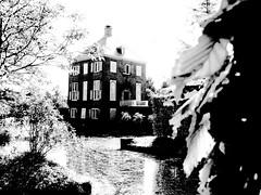 Kasteel in Z/W (José D...) Tags: museum museumpark huygens'hofwijck voorburg denhaag thehague dedoka maandopdracht zwartwit explore