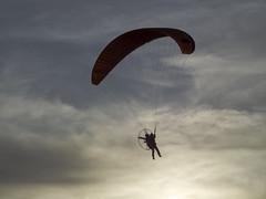 In Flight (michaelmueller410) Tags: paraglider paragliding sunset sport flight flug motorgleitschirm motorschirm luft air airborne gegenlicht montgolfiade oberharz 2019 clausthal zellerfeld hasenbach wolken clouds sky shadow contrast kontrast olympus40150mmf4058