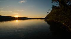 R1903868 (ivoräber) Tags: sunset sony switzerland systemkamera swiss schweiz suisse seengen hallwilersee hallwil hallwyl lake
