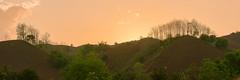 _J5K8216-20.0513.Chiềng Đông.Yên Châu.Sơn La (hoanglongphoto) Tags: asia asian vietnam northvietnam northwestvietnam landscape scenery vietnamlandscape sunset sky redsky tree trees hill hillside natute canon canoneos1dsmarkiii canonef70200mmf28lisiiusm tâybắc sơnla yênchâu chiềngđông phongcảnh hoànghôn bầutrời bầutrờimàuđỏ ngọnđồi sườnđồi hàngcây thiênnhiên hoànghôntâybắc northernvietnam vietnamscenery phongcảnhsơnla hoànghônsơnla flankshill panorama theforest rừng minimalisme