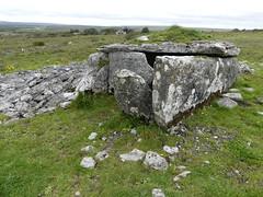 _1710467 Parknabinnia (11) (archaeologist_d) Tags: ireland archaeologicalsite archaeologicalruin archaeology burren parknabinniawedgetomb parknabinnia 2000bc tomb