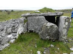 _1710467 Parknabinnia (6) (archaeologist_d) Tags: ireland archaeologicalsite archaeologicalruin archaeology burren parknabinniawedgetomb parknabinnia 2000bc tomb