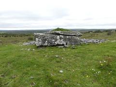 _1710467 Parknabinnia (3) (archaeologist_d) Tags: ireland archaeologicalsite archaeologicalruin archaeology burren parknabinniawedgetomb parknabinnia 2000bc tomb
