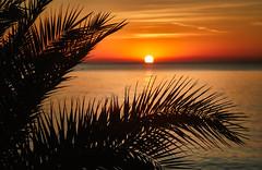 Cap Negret, Spain (Vest der ute) Tags: fav25 spain sea seascape sunrise palmtrees clouds fav200