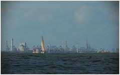 Sector Maasmond (LeonardoDaQuirm) Tags: rhine rhein rijn maas rotterdam yacht delta northsea nordzee nordsee nieuwemaas europoort maasvlakte sailing segeln zeilen maasmond maasentrance
