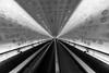 the long escalator / convergence (Özgür Gürgey) Tags: 14mm 2019 bw d750 elbphilharmonie hamburg nikon samyang architecture convergence escalator leading lines shades vanishingpoint