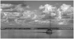 Haringvliet Terminal (LeonardoDaQuirm) Tags: rhine rhein rijn maas rotterdam stellendam yacht delta northsea nordzee nordsee haringvliet hellevoetsluis sailing segeln zeilen blackwhite