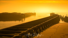 Walberswick Golden Mist [Explored] (Aron Radford Photography) Tags: walberswick suffolk southwold sunrise dawn golden hour mis sea defences beach caost sand harbour jetty pier anglia east nature landscape seascape outdoors uk