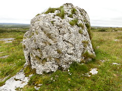 _1710467 Parknabinnia (14) (archaeologist_d) Tags: ireland archaeologicalsite archaeologicalruin archaeology burren parknabinniawedgetomb parknabinnia 2000bc tomb