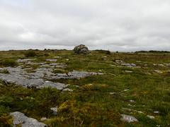 _1710467 Parknabinnia (13) (archaeologist_d) Tags: ireland archaeologicalsite archaeologicalruin archaeology burren parknabinniawedgetomb parknabinnia 2000bc tomb