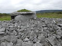 _1710467 Parknabinnia (8) (archaeologist_d) Tags: ireland archaeologicalsite archaeologicalruin archaeology burren parknabinniawedgetomb parknabinnia 2000bc tomb