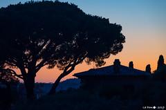 Fin de journée éstivale (La Pom ) Tags: france cote azur mer meditéranee french riviera coucher soleil sunset bormes mimosas