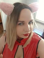 Horny bunny hehe xxx (Ana Keel) Tags: trap transgender transvestite trans transisbeautiful tranny transcend tgirl tgurl tgirls tg bunny latex blonde slut cd crossdressers crossdressing crossdreamer feminisation femboy