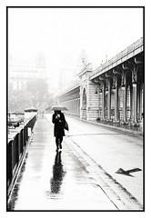 Une femme sous la pluie à Paris (freephysique) Tags: