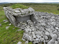 _1710467 Parknabinnia (4) (archaeologist_d) Tags: ireland archaeologicalsite archaeologicalruin archaeology burren parknabinniawedgetomb parknabinnia 2000bc tomb
