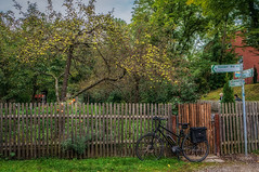 2019 Bike 180: Day 143, September 24 (suzanne~) Tags: fence bike garden apple tree bavaria germany 2019bike180 tmt fencedfriday