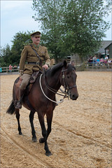 Officer's Steed (meniscuslens) Tags: horse hounds heroes soldier uniform event arena charity trust wwi ww1 buckinghamshire aylesbury princes risborough high wycombe