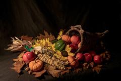 Autumn Harvest (J-F No) Tags: stilllife life still naturemorte nature morte studio autumn cornucopia harvest apple squash sony a7rii 1635mm