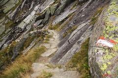 IMG_3057 (ChPflügl) Tags: nationalpark hohe tauern mountein berge chpflügl chpfluegl christian austria österreich alpen alpine alps pinzgau salzburg nature obersulzbachtal