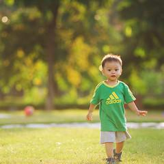 阳光明媚的下午 (夏同學) Tags: 阳光明媚的下午 逆光 绿色 遛娃 d810 阳光灿烂 adidasbaby 草地