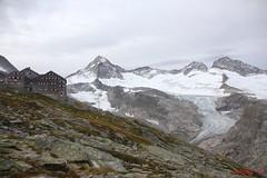 IMG_3045 (ChPflügl) Tags: nationalpark hohe tauern mountein berge chpflügl chpfluegl christian austria österreich alpen alpine alps pinzgau salzburg nature obersulzbachtal