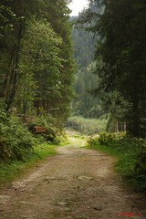IMG_3270 (ChPflügl) Tags: nationalpark hohe tauern mountein berge chpflügl chpfluegl christian austria österreich alpen alpine alps pinzgau salzburg nature obersulzbachtal
