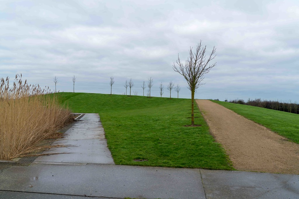 FATHER COLLIN'S PARK IS THE FIRST SUSTAINABLE PARK IN IRELAND [PHOTOGRAPHED IN JANUARY 2016]-156311