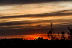 Sunset / @ 75 mm / 2019-08-13 (astrofreak81) Tags: light sunset shadow sky sun clouds heaven sonnenuntergang himmel wolken explore sonne schatten orange dawn dresden orangesky sylvio müller astrofreak81 sylviomüller 20190813