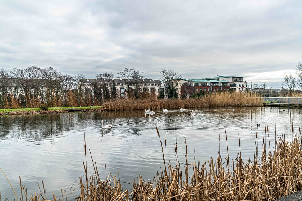 FATHER COLLIN'S PARK IS THE FIRST SUSTAINABLE PARK IN IRELAND [PHOTOGRAPHED IN JANUARY 2016]-156282