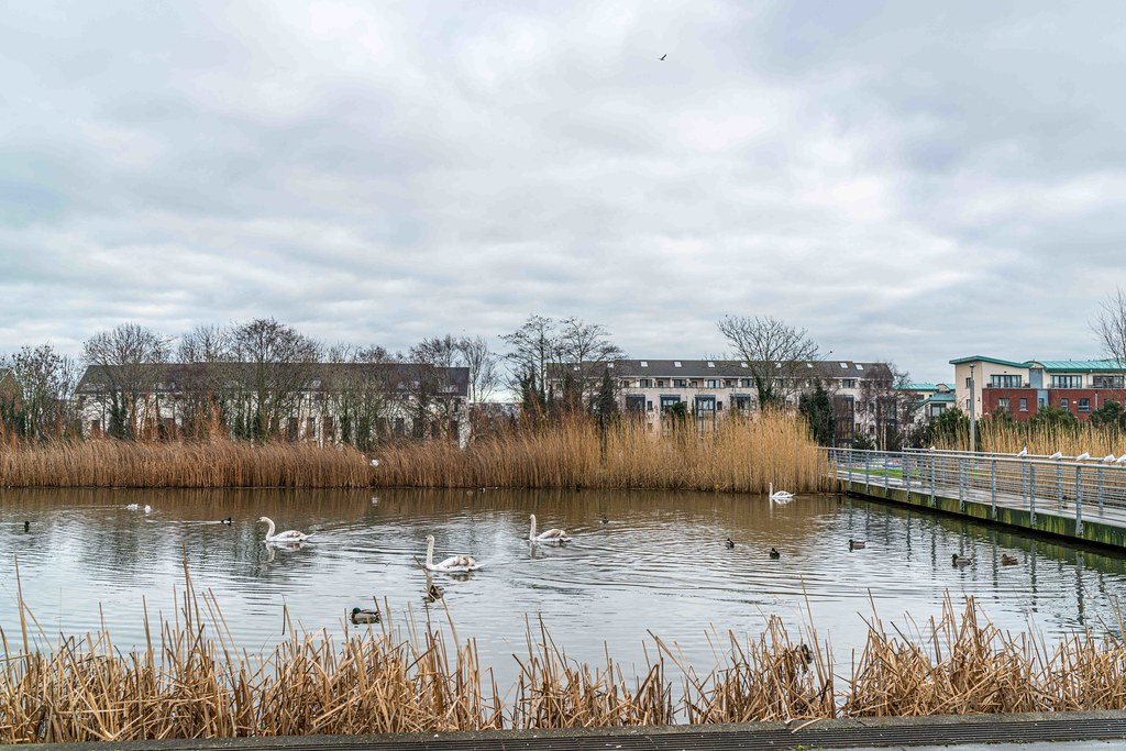FATHER COLLIN'S PARK IS THE FIRST SUSTAINABLE PARK IN IRELAND [PHOTOGRAPHED IN JANUARY 2016]-156278