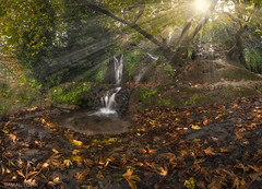 Feeling a Times (samal photography) Tags: landscape autumn adventure panorama beautiful fall sunset sunlight colorful trees photography outdoor mountain travel jungle waterfall america samaltofik computation vermont atlantic colorado longexposure kurdistan nature naturallight forest focus