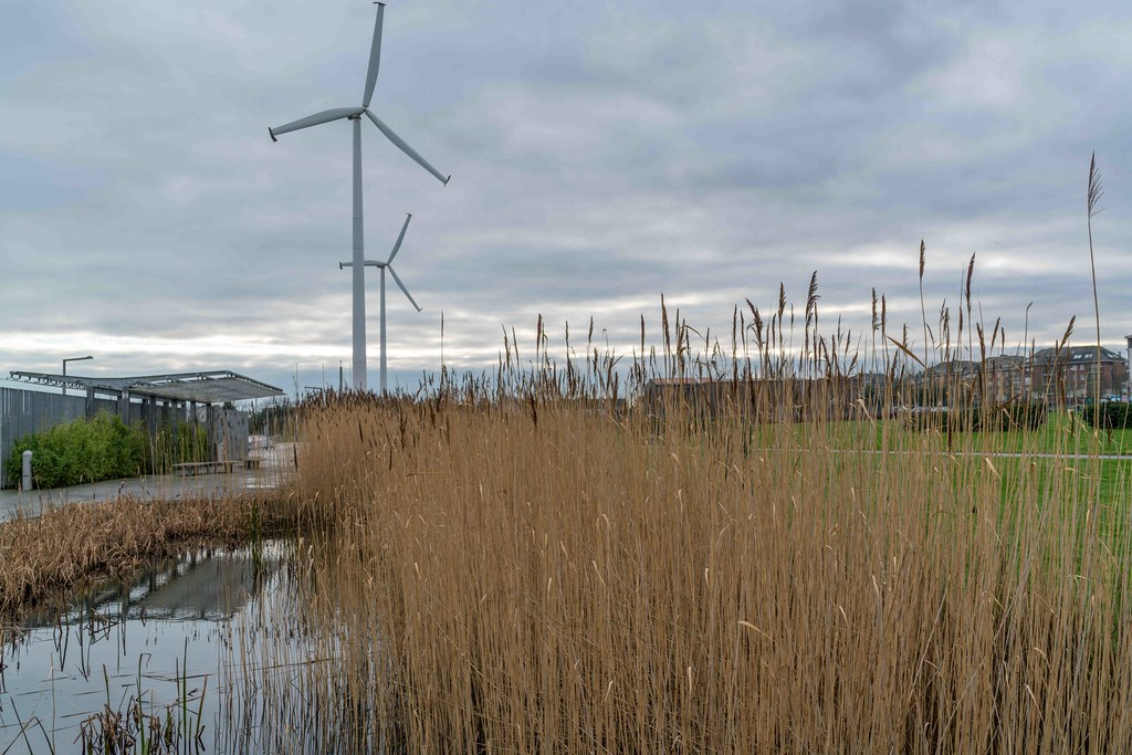 FATHER COLLIN'S PARK IS THE FIRST SUSTAINABLE PARK IN IRELAND [PHOTOGRAPHED IN JANUARY 2016]-156288