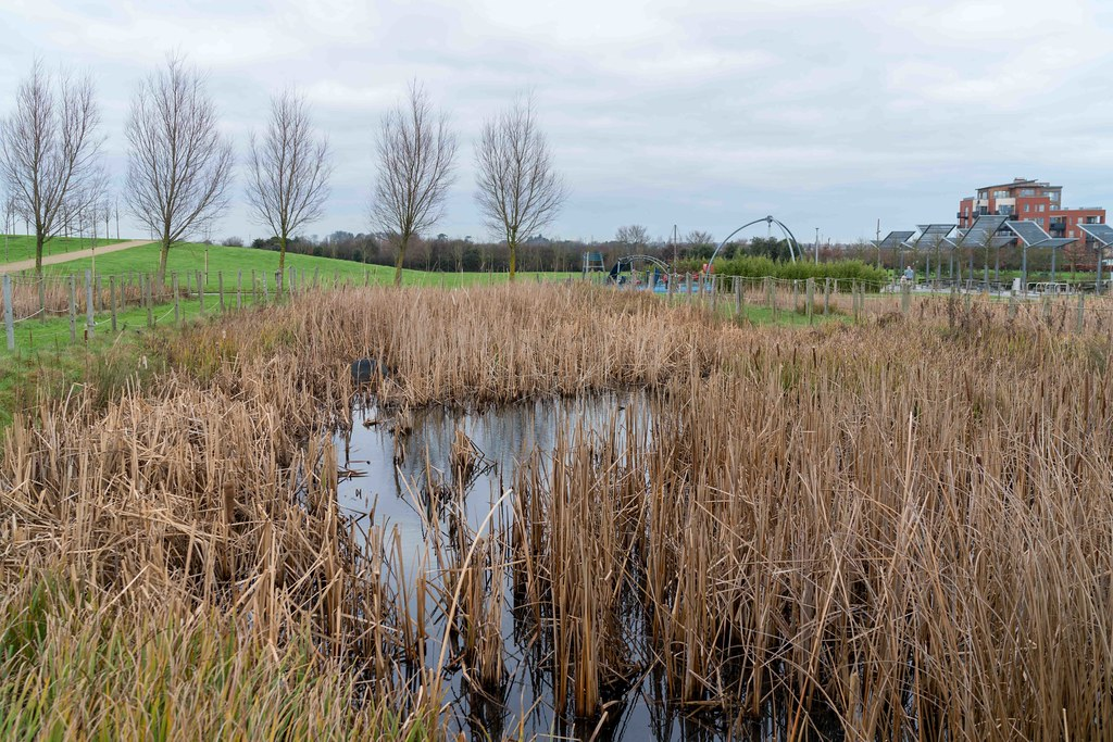 FATHER COLLIN'S PARK IS THE FIRST SUSTAINABLE PARK IN IRELAND [PHOTOGRAPHED IN JANUARY 2016]-156308