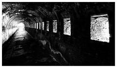 Inside the Napoleonic ramparts of Veere _ 3 (leo.roos) Tags: veere walcheren zeeland stenenbeer bolwerk napoleon 1811 rampart fortification tunnel embrasure postern poterne wall brick schietgat schietsleuf schietsleuven noiretblanc bw solaag lichtsch schaduw eng a7rii venusopticslaowa15mmf4widemacro laowa154 darosa leoroos hollebeer