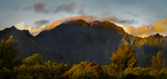 Mountain Sunrise (RWGrennan) Tags: kauai mountain waterfall clouds green garden view landscape nature hi hawaii travel sky light nikon d610 pano panorama panoramic forest rwgrennan rgrennan ryan grennan tree princeville halelea reserve waioli stream island tamron 150600