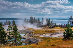 West Thumb, Yellowstone National Park (YL168) Tags: westthumb geyserbasin lake yellowstone nationalpark stream spings hot cloud