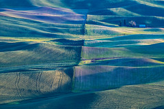 Rolling in Palouse (jeff's pixels) Tags: palouse hills spring landscape green washington pnw pacificnorthwest nikon