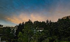 lever de soleil 24 septembre 2019 lightroom-2 (lucile longre) Tags: leverdesoleil septembre automne caluire rhône auvergnerhônealpes paysage nature