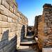 Entre muros de Delos