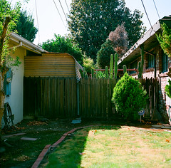 Willow Glen, California (bior) Tags: willowglen hasselblad500cm ektar25 kodakektar ektar expiredfilm 120 mediumformat 6x6cm sanjose california suburb yard