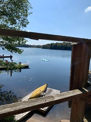 Ducks on the pad (pigdump) Tags: stewartlake merganser duck mactier muskoka canoe deck