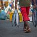 General Photos: Maldives